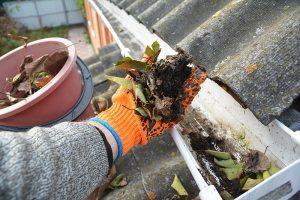 Verstopfte Dachrinne wird von der Dachdeckerei Hoehne gereinigt